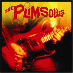 One Night In America - The Plimsouls