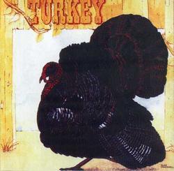 Turkey - Wild Turkey