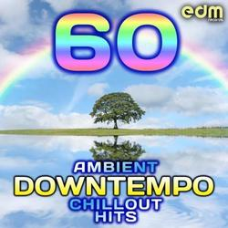 60 Ambient, Downtempo, Chillout Hits (No. 2) - Various Artists