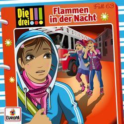 063/Flammen in der Nacht - Die drei !!!