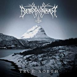 True North - Borknagar
