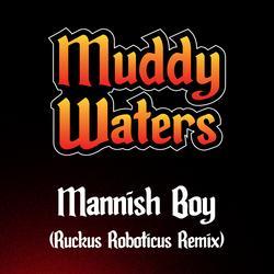 Mannish Boy (Ruckus Roboticus Remix) - Muddy Waters