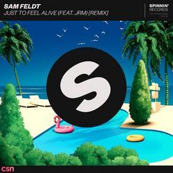 Just To Feel Alive (Remix) (Single) - Sam Feldt - JRM