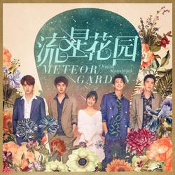 Vườn Sao Băng OST (流星花园 音乐专辑) - Đới Bội Ni