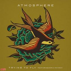 Trying To Fly - Single - Atmosphere - Eric Mayson