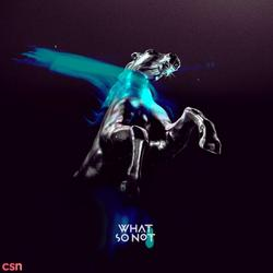 Not All The Beautiful Things - What So Not - San Holo - Daniel John