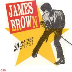 20 All Time Greatest Hits! - James Brown