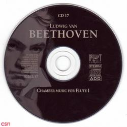 Chamber Music For Flute I - Beethoven