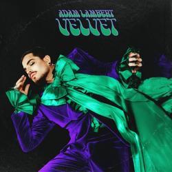 Velvet - Adam Lambert