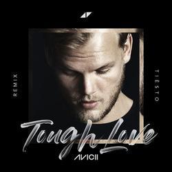 Tough Love (Tiësto Remix) - Avicii - Agnes - Vargas & - Lagola