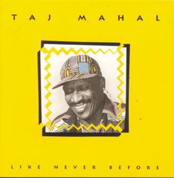 Like Never Before - Taj Mahal