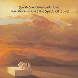 Transformation (The Speed of Love) - David Sancious