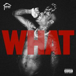 What! - GrownBoiTrap