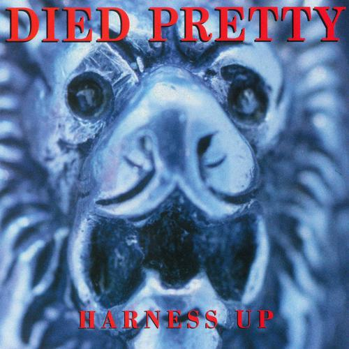 Harness Up - Died Pretty