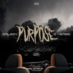 Purpose - Calboy
