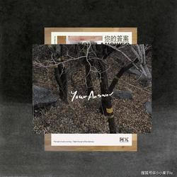 Đáp Án Của Bạn / 你的答案 (Single) - A Nhũng