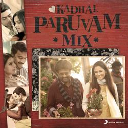 Kadhal Paruvam Mix - Various Artists