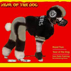 Year of the Dog - Royal Trux