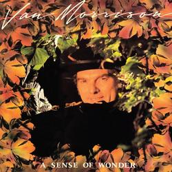 A Sense of Wonder - Van Morrison