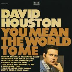 You Mean the World to Me - David Houston