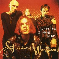 What Do I Have To Do? - Stabbing Westward