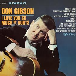 I Love You So Much It Hurts - Don Gibson
