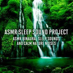 ASMR Binaural Sleep Sounds and Calm Nature Noises - ASMR Sleep Sound Project