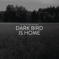 Dark Bird Is Home - The Tallest Man On Earth