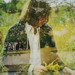 Primrose Green - Ryley Walker