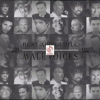 Best Audiophile Male Voices - Various Artists