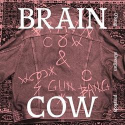 So Beautiful (Single) - Braincow