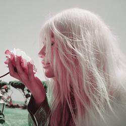 Learn to Let Go (The Remixes) (Single) - Kesha