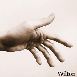 Up (Single) - Wilton