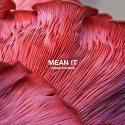 Mean It (Single) - Jordan Solomon